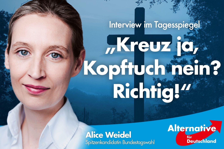 AfD- SPITZENKANDIDATIN ALICE WEIDEL IM INTERVIEW MIT DEM ...